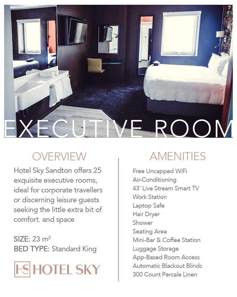 Hotel Sky Executive Room